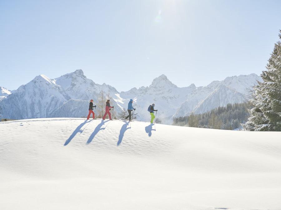 Winter- und Schneeschuhwandern
