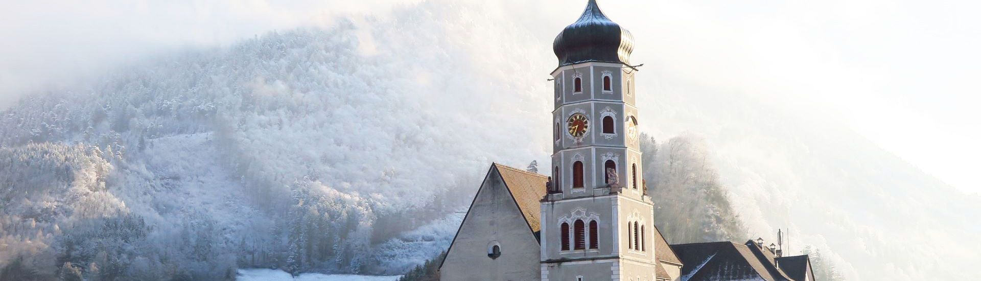 Die Grnen Vorarlberg - Bludenz - Grne Vorarlberg - comunidadelectronica.com